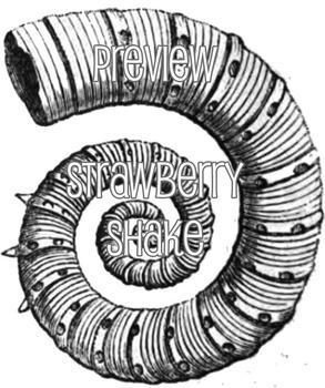 FOSSILS Clip Art