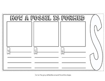 FOSSILS Flip Flap Book ®