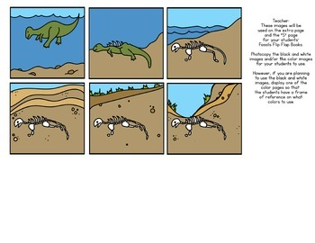 FOSSILS Flip Flap Book ® | Distance Learning