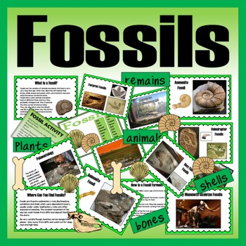 FOSSILS TEACHING RESOURCES KS1, KS2 SCIENCE HISTORY ANIMALS DINOSAURS BONES