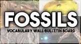 FOSSILS word wall | FOSSILS Bulletin Board
