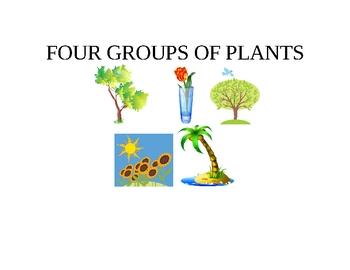 FOUR PLANT GROUPS