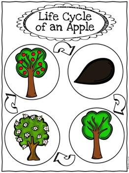 Apples Free