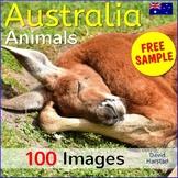 FREE - Australian Animals - 2 Posters