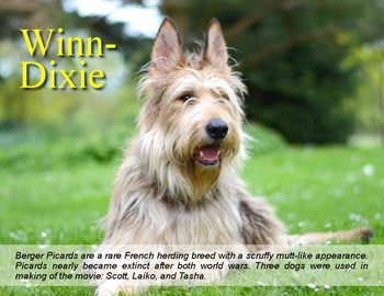 FREE - Because of Winn Dixie: Dog Poster (K-6)