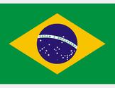 FREE - Brazil Flag