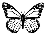 FREE - Butterfly Life Cycle & Butterfly Coloring Page