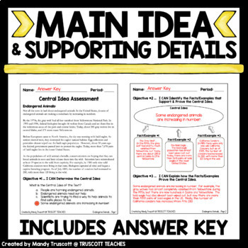 FREE Central Idea Assignment w/ 4 Point Rubric
