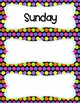 Days Of The Week Cards - Great for Calendar Time - Colorful Polka Dots Theme