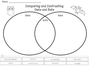 FREE Comparing and Contrasting Owls & Bats Venn Diagram