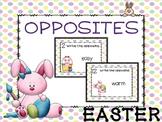 Easter BUNNY Antonyms (Opposites) Task Cards