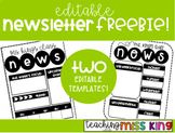 FREE Editable Newsletter Template- 2 Versions!