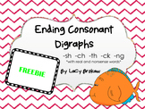 FREE Ending Consonant Digraphs worksheet sh, ch, th, ck, ng