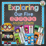 FREE Five Senses Anchor Charts