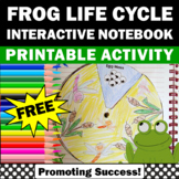 FREE Frog Life Cycle Interactive Notebook Distance Learning Science Packet