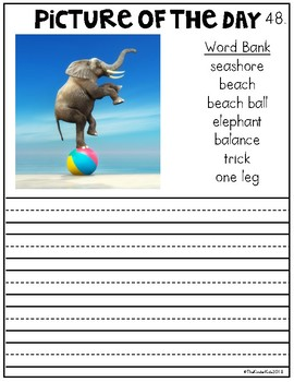 FREE Funny Animals Picture Prompts for Narrative Writing