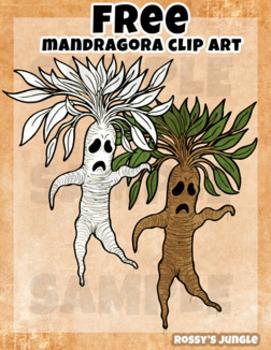 FREE High Ed.: Mandragora Clip Art