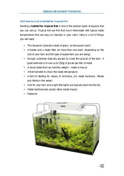 FREE How to build a habitat for fish - in class