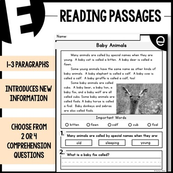 FREE LEVEL A-F Reading Comprehension Passages - SAMPLE PAGES