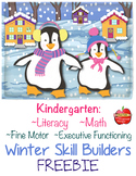 FREE Literacy, Math, Fine-Motor, Executive Functioning: Winter Skill Builders