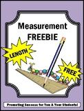 FREE Measuring Length Measurement  Worksheets 2nd Grade Ma