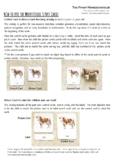 FREE Montessori 3 Part Cards Presentation (Use)