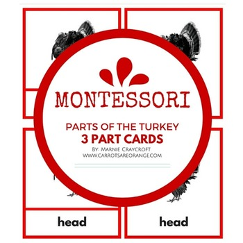 Montessori Parts of the Turkey 3 Part Cards