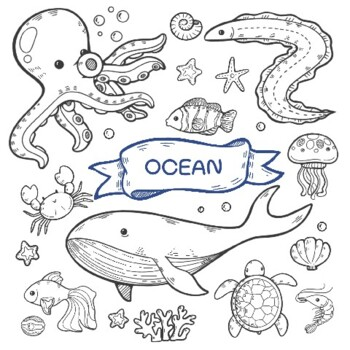 Ocean Animal Coloring Pages Worksheets Teaching Resources Tpt