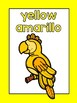 FREE Parrot Color Posters