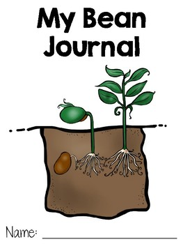 FREE Plant Growth and Change - My Bean Journal
