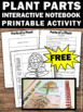 FREE Parts of a Plant Craft, Science Interactive Notebook