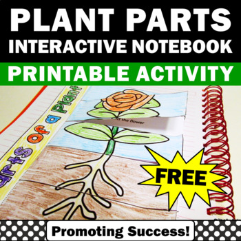 FREE Parts of a Plant Cut and Paste Activity, Interactive Notebook