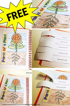 FREE Parts of a Plant Interactive Notebook Distance Learning Science Activity