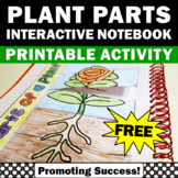 FREE Parts of a Plant Cut and Paste Interactive Notebook Spring Summer Activity