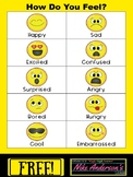 """FREE Printable """"How Do You Feel?"""" Emotions Chart"""
