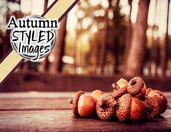 Autumn/ Fall Styled Images