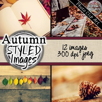 Photo Clip Art (12 images/3 sizes) - Autumn Styled Images