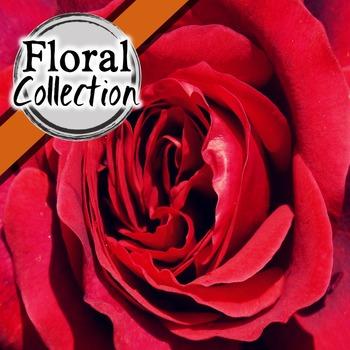 Floral Digital Paper