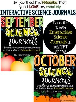 FREE Pumpkin Investigation  {Science}