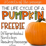 Pumpkin Life Cycle FREE Differentiated Reading Comprehension Passage
