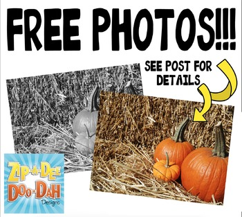 FREE Pumpkins Stock Photos Pack — Includes Commercial License!