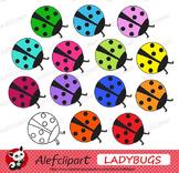 FREE!!!  Rainbow Ladybugs Digital Clipart Creative Clips