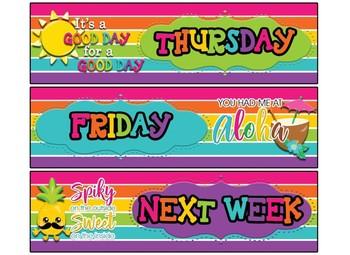 FREE!!! Rainbow Stripe Theme Daily Drawer labels