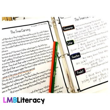 FREE Reading Comprehension Passages, Questions, and Anchor Charts Gr. 4-6