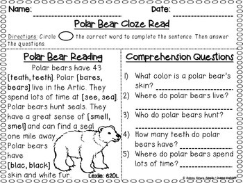 ***FREE SAMPLE*** Primary CloZe Reads