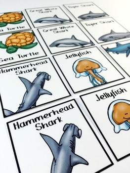 FREE Shark Pick-A-Partner Cards