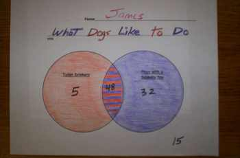FREE VENN DIAGRAM-Life of Dogs-Circle Sheets&Question Sheet with Key