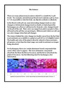 Valentine Chemistry: Acid/Base Flower pH Science Demonstration - FREE download