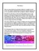 Valentine Chemistry: Acid/Base Flower pH Science Demonstra