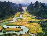FREE - Vietnam - Vietnam Country Study - 4 Posters